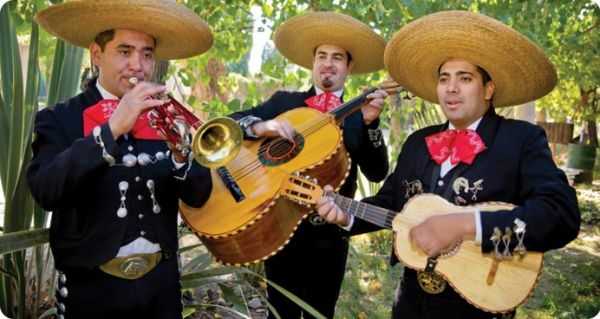Mariachi : Specialty Acts